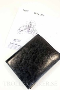 Hot_Hip_Wallet_4f7069767f197.jpg