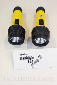 Flashlight_Fun_4df52379a6102.jpg